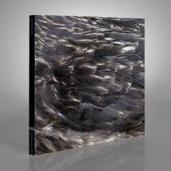 Arstidir - Arstidir - CD DIGIPAK