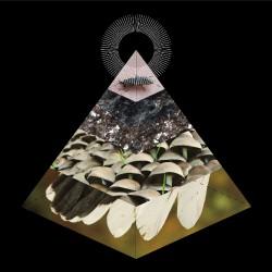 Belus - Apophenia - CD