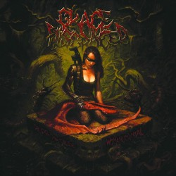 Grace Disgraced - The Primal Cause: Womanumental - CD