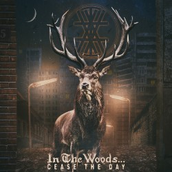 In the Woods - Cease the Day - DOUBLE LP